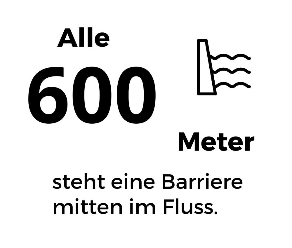 Alle 600m steht eine Barriere mitten im Fluss.
